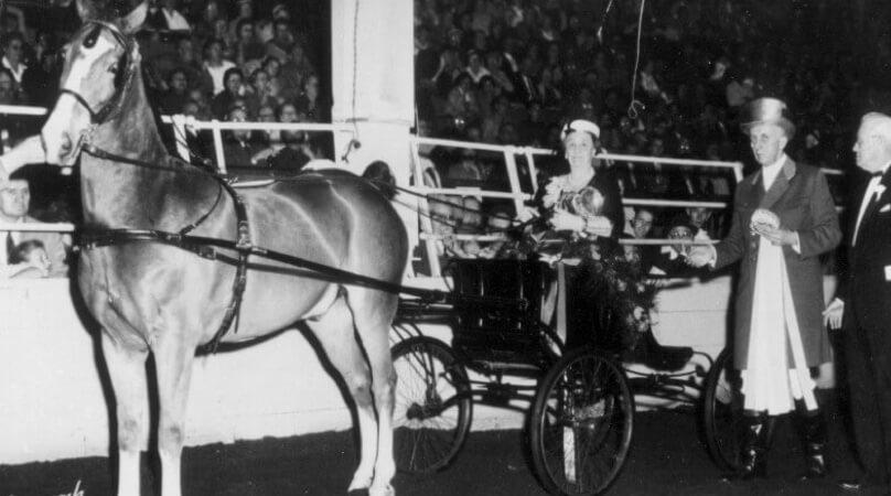 HorseShow_Historical