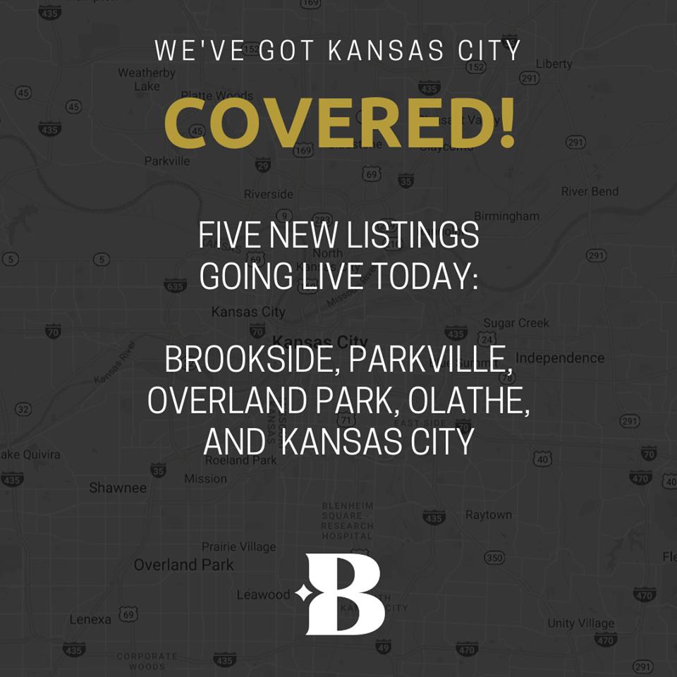 Blake Nelson & Associates Listings